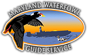 Maryland Waterfowl Hunting